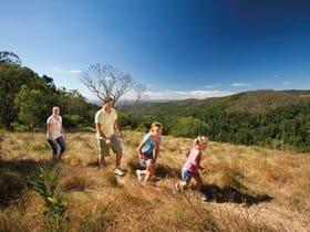 Walking at the Bunya Mountains