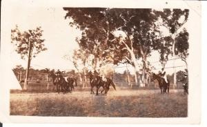 Horse Racing at Tarong Phot - D Clapperton